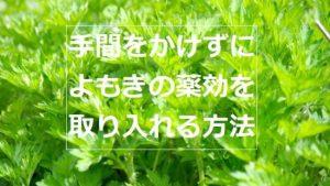 よもぎ茶国産無農薬!おすすめはコレ。水出しOKで手間なく美味しい!