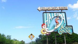 ハワイは英語話せない人も本当に旅行中困らないの?